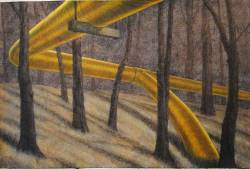 Yellow Pipe in the Woods